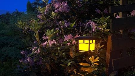 Benefits of Solar Powered Lights This Garden Season