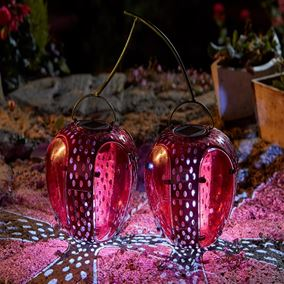 Funky Cherries Solar Lantern Garden Light
