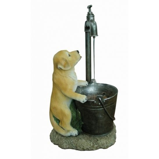 Puppy at Tap Lit Water Feature