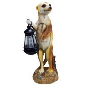 Meerkat with Solar Lantern