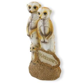 Solar Meerkat Family Welcomes