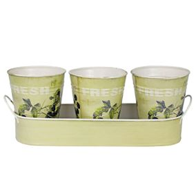 Set of 3 Blackberry Design Plant Pots with Tray
