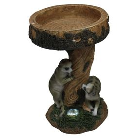 Meerkats Playing On Tree Trunk Solar Bird Bath