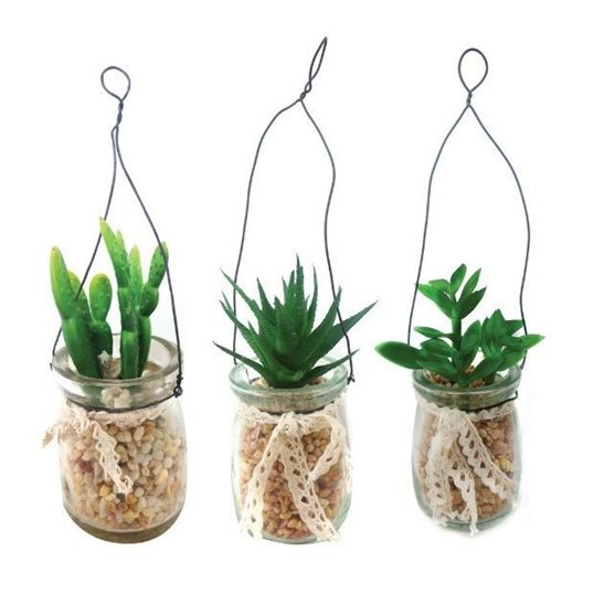 house plant box code html with Succulent Cactus In Glass Jars Pot Plants 3 Pack on 2675 Loto Plant Machinery Kit 207 furthermore Shallow Container Freeze Sealing Case Shallow Type additionally China Protection   Sun Shade   Agriculture   Protection   Wind   Sand Control   Cargo   Plant   Shade Sail Protect Moisture   Fishing besides 3571 Save Water Save Earth moreover Succulent Cactus In Glass Jars Pot Plants 3 Pack.