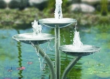 Caring for Your Water Feature in Summer