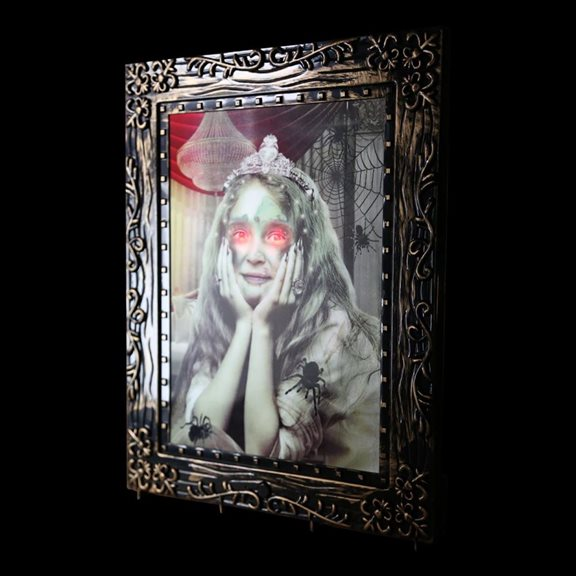 additional image for Battery Operated Lady In Frame Horror Picture With Sensor Halloween Display