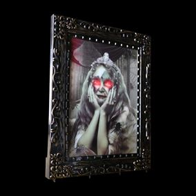 Battery Operated Lady In Frame Horror Picture With Sensor Halloween Display