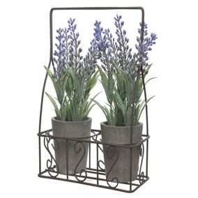Set of 2 Lavender Pots in Metal Rack