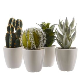 Pack of Four Artificial Indoor Plants