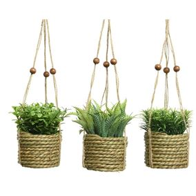 Triple Pack of Plants in Jute Rope Hanging Pots with Poplar Wooden Beads