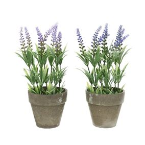 Pack of 2 Artificial Potted Lavender Plants