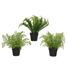 Pack of 3 Artificial Potted Fern Plants