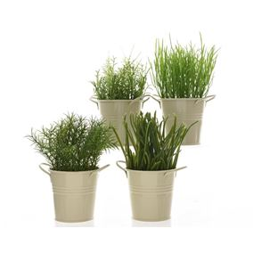 Potted Herbs In Zinc Plant Pots (Four Pack)