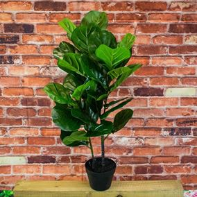 1 Metre Artificial Fig Tree In Pot