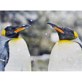 Penguin Couple Wall Art Canvas with White LEDs