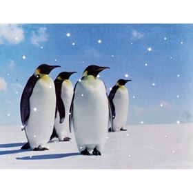Penguin Family Christmas Wall Canvas with White Twinkling Lights