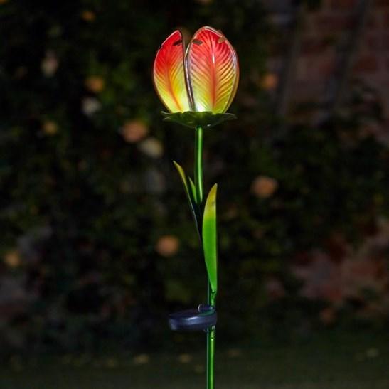 Solar Glass Tulip Flower Lights 2 Pack