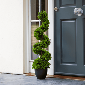 Pack of 2 Topiary Twirl Trees in Black Pots (90cm)